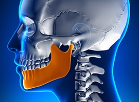 Animation of jaw and skull bone connection